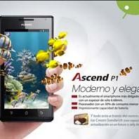huawei-phones-diseño-de-interfaz-para-su-web-atraves-de-nuestra-agencia-digital-en-quito
