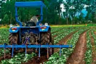 nova--agricultura-para-ecuador-se-diseño-una-pagina-web-quito-ecuador