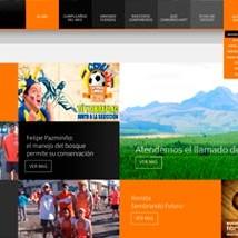 cotopaxi-en-ecuador-necesito-un-diseño-web-simple-pero-duradero