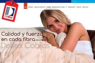 delltex-es-una-empresa-ubicada-en-quito-ecuador-que-necesitaba-del-diseño-de-un-sitio-web