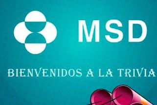 msd-diseño-cd-multimedia-para-empresas-ecuador