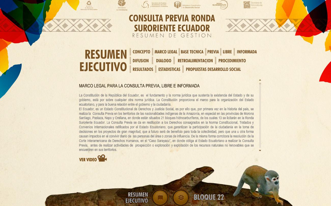 consulta amazonica resumen gestion